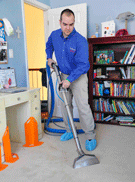 Arlington Wall To Wall Carpet Cleaning