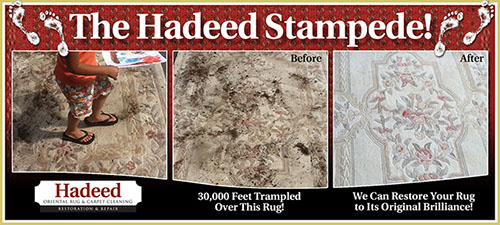 The Hadeed Stampede!