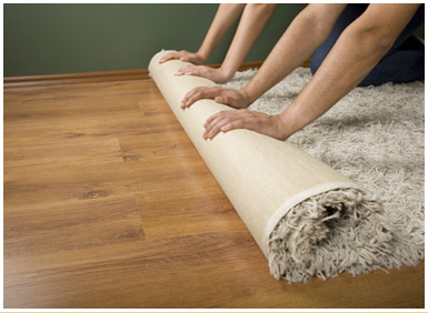 Rug Cleaning Carpet Repair Reweaving Restoration